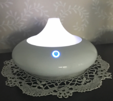 Detoxify Your Indoor Air with Essential Oils